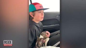 il cucciolo di Logan