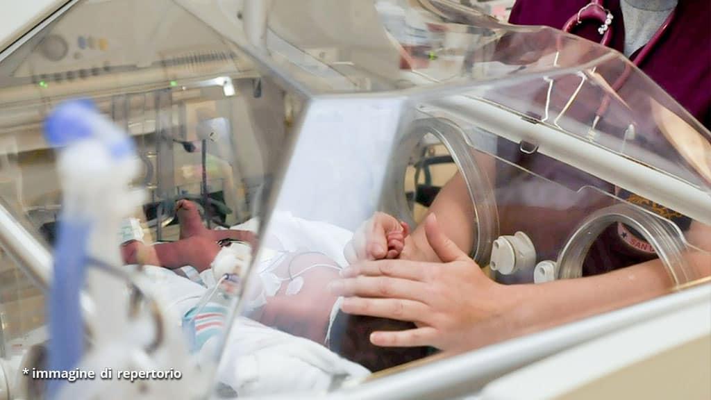 mani di infermiera e neonato in incubatrice
