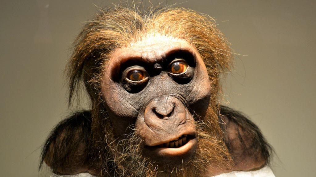 ricostruzione uomo di neanderthal