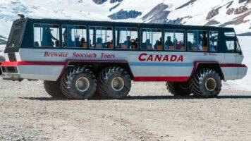 Tragedia in Canada, autobus si ribalta sul ghiacciaio: morti e feriti gravi fra i turisti
