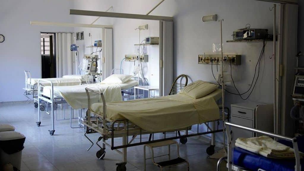 Palermo, cadavere ricoperto di formiche all'obitorio: aperta un'indagine interna all'ospedale Cervello