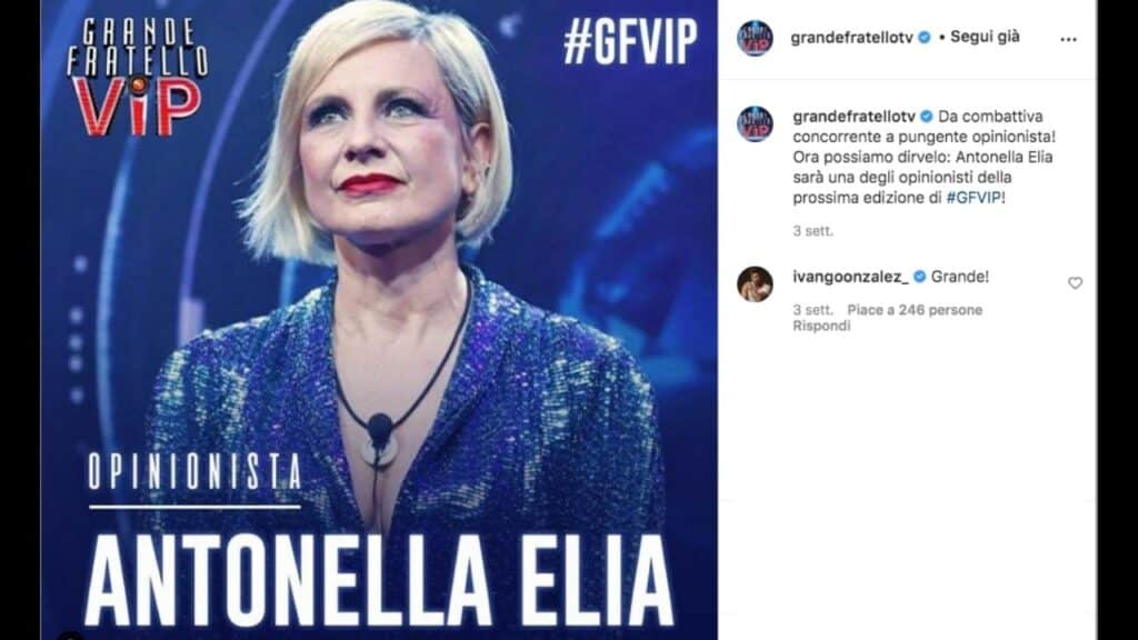 Antonella elia al grande fratello vip