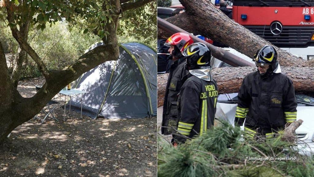 Una tenda da campeggio e Vigili vicino ad un albero caduto
