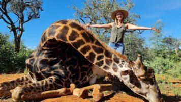 Merelize Van Der Merwe posa con la giraffa nera che ha ucciso