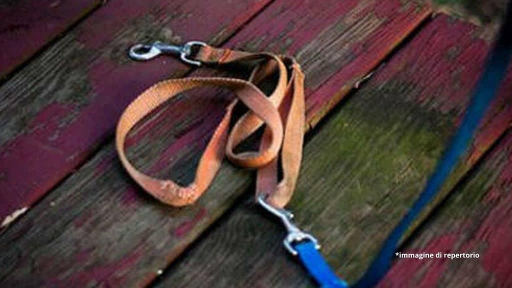 Caserta, 16enne legato con un guinzaglio al cofano e picchiato dal padre: arrestato il 54enne, violenze anche sulla madre