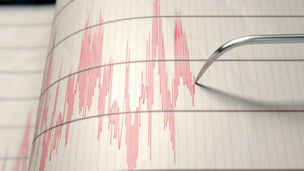 sismografo segnala terremoto