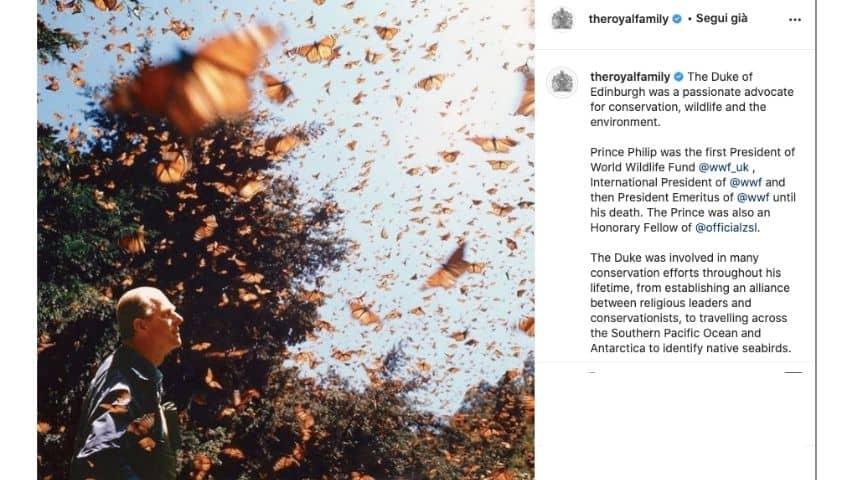 La foto del principe Filippo circondato da farfalle pubblicate dalla Royal Family