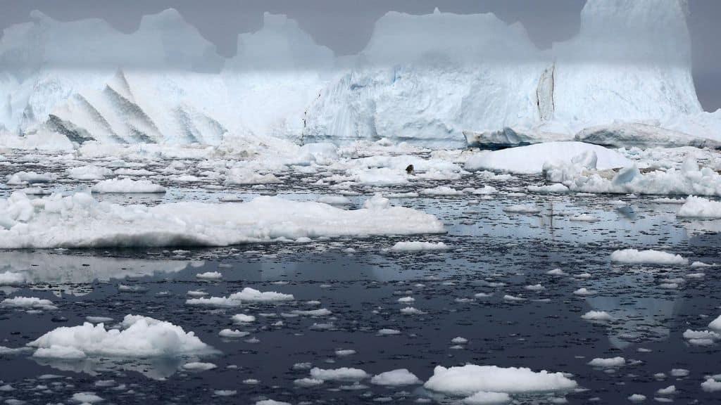 antartide video del ghiacciaio pine island