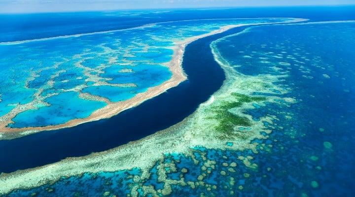 barriera corallina pericolo polemica unesco