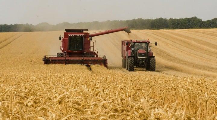 agricoltura, produzione alimentare