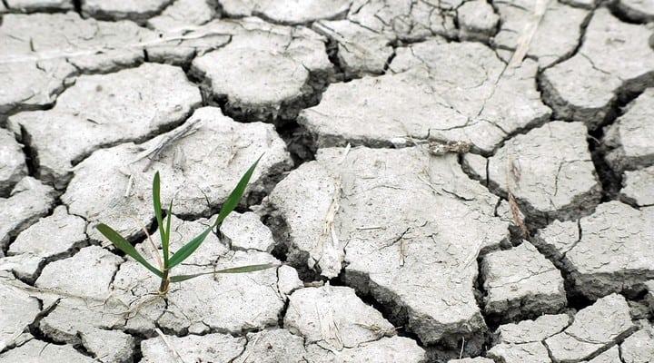 cambiamento climatico, caldo, siccità