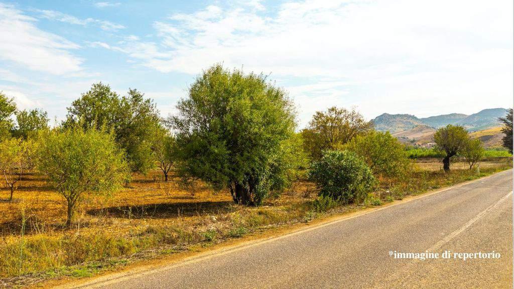 Incidente mortale in Sardegna, muore agente della Polstrada