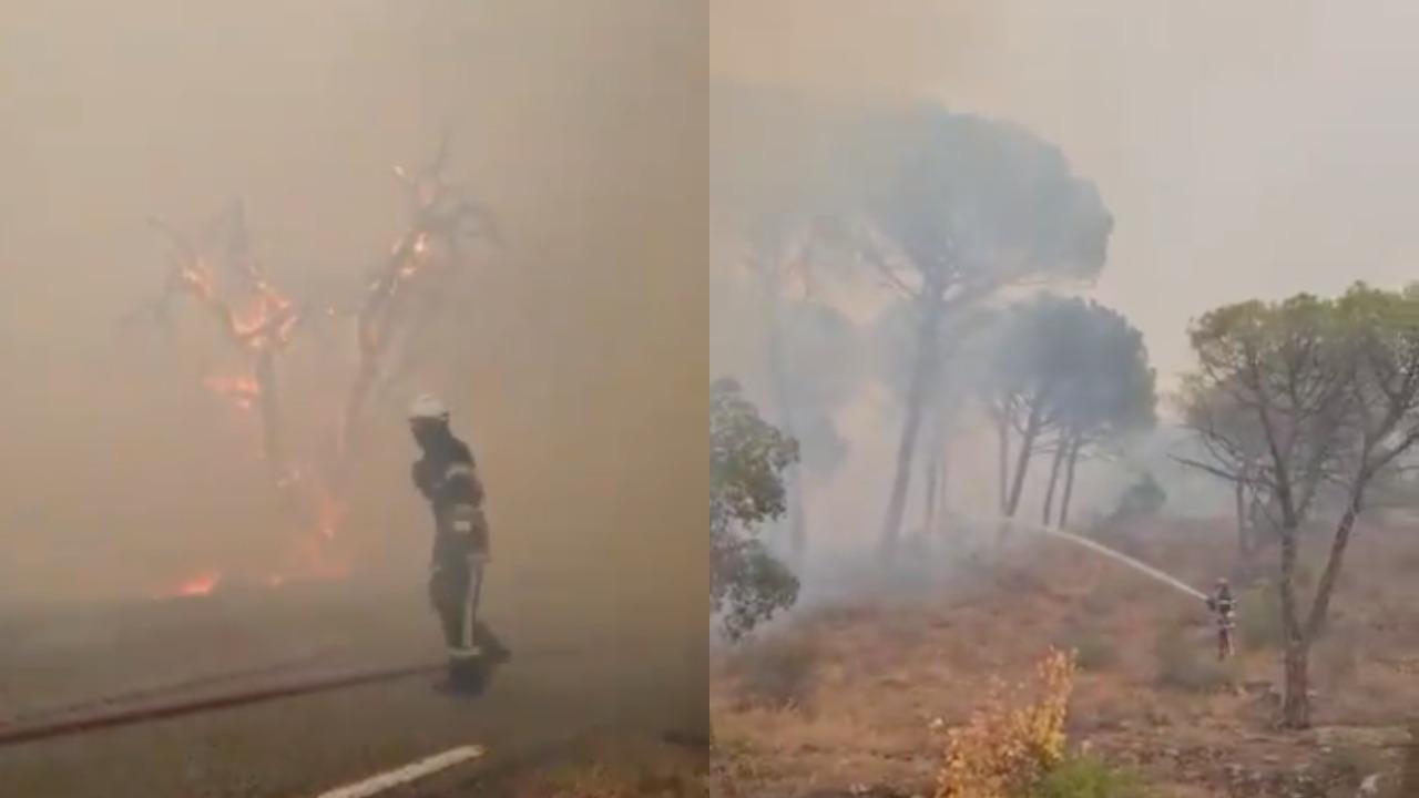 Incendio costringe 7mila persone lontane dalle loro casa per un'altra notte. La situazione in Costa Azzurra