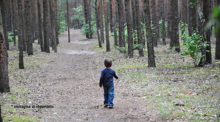 Bimbo di 3 anni disperso per quasi 4 giorni in un bosco: beveva da un torrente tra i cespugli